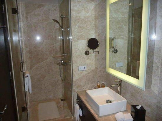 Grand Emperor Hotel:                   shower