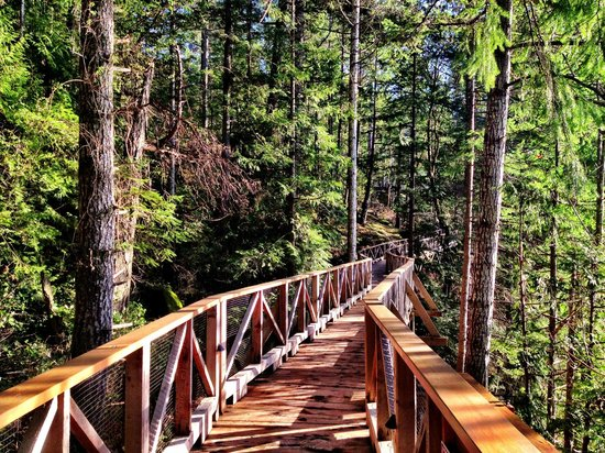 Rockwater Secret Cove Resort: Walkway to Tent Cabins