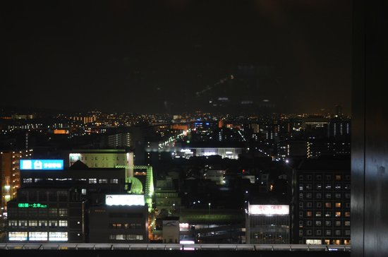 Hotel Granvia Kyoto:                   The view over the city!!!!!