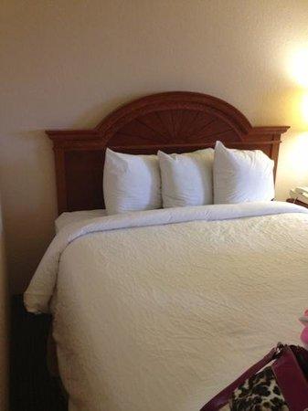 Hilton Garden Inn Richmond Innsbrook:                   the beds