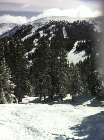 Loveland Ski Area :                   9 inches of powder!