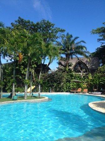 Hotel Vila Lumbung : pool