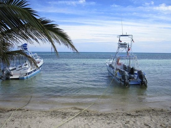 Dreamtime Dive Center: the boats that took us to the dive site