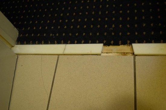 HomeGate Studios & Suites San Antonio Fiesta Park:                   broken tile