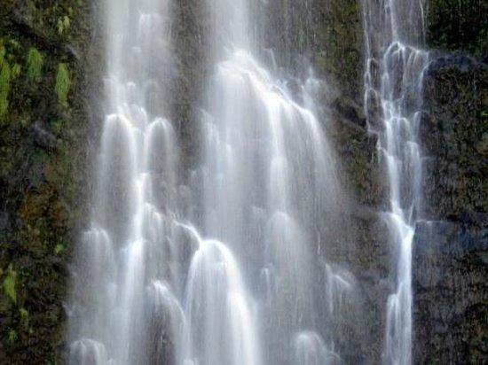 Pipiwai Trail:                   Cascades