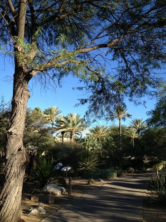 Miraval Arizona Resort & Spa:                                     Walking to the Spa