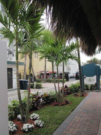 Caribbean Resort by the Ocean:                   Aménagement extérieur