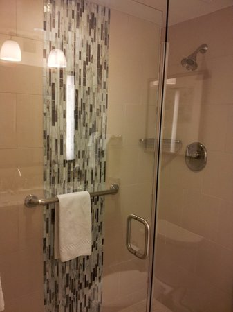 Boar's Head Resort:                   Shower with modern decor