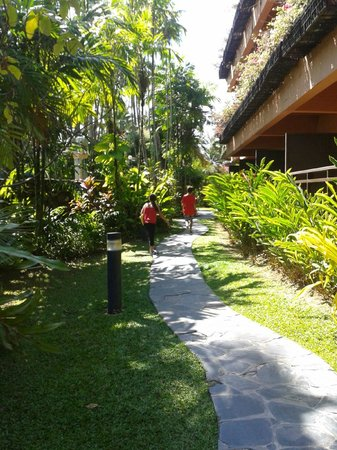 Patong Merlin Hotel:                   Pathways seperating rooms from pools