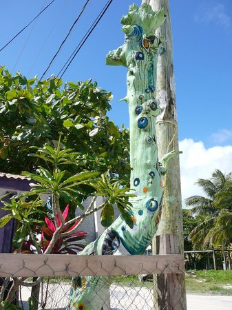 Caye Caulker: A very interesting pole