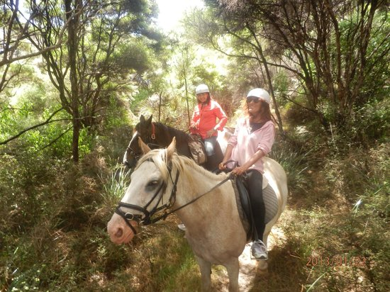 Pakiri Beach Horse Rides - Day Tours:                   Having fun
