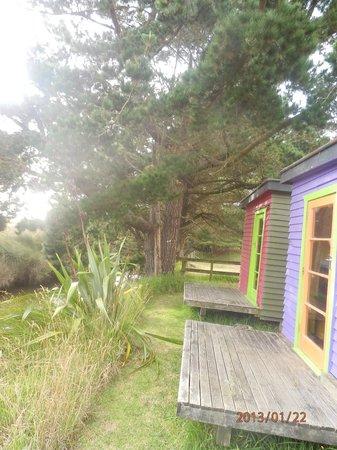 Pakiri Beach Horse Rides - Day Tours:                   Cottages