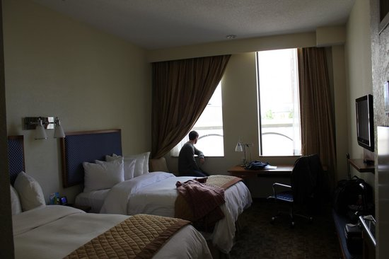 Wyndham Garden Baronne Plaza New Orleans:                   our basic room with windows