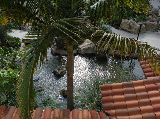 Hyatt Regency Huntington Beach Resort & Spa:                                     Koi pond and spa                                  