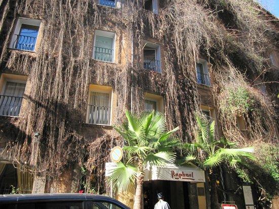 拉斐爾酒店照片