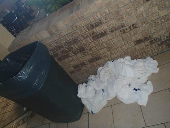 Quality Inn Omaha:                   Here's the giant pile of towels we found.