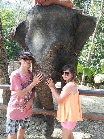 Siam Safari:                   Feeding the Elephants after a ride