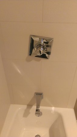 Hilton Chicago:                   Shower Control thing wasn't Straight