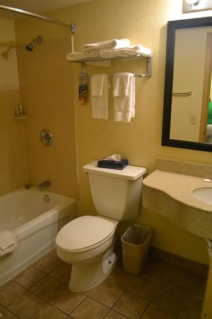 Emerald Coast Inn & Suites : Clean Bathroom with Puffy Soft Bath Towels