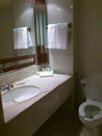 Radisson Blu Hotel, Doha: basin