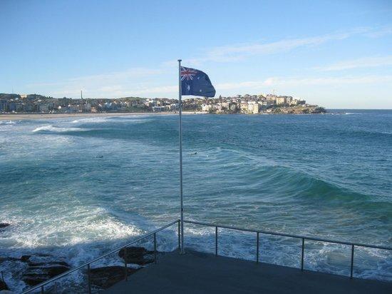 bondi beach australian flag
