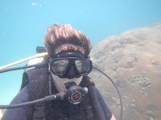 CSI: SAMUI Dive School :                   Me actually diving