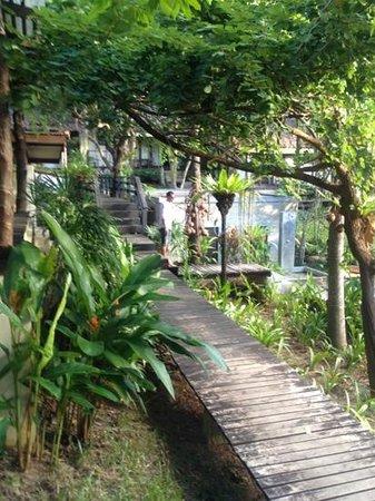 The Sundays Sanctuary Resort & Spa:                                     Walkways