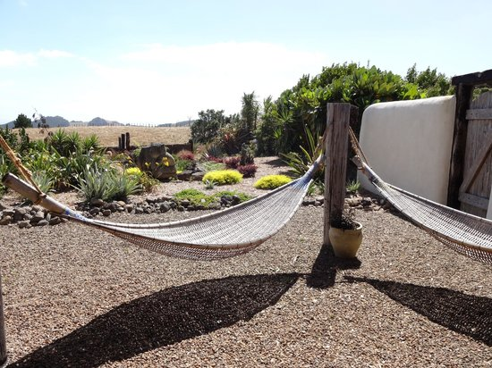 Manawa Ridge:                   Relaxing hammocks