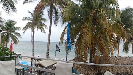 Hotel Windsurf Paradise:                                     Vista de la playa