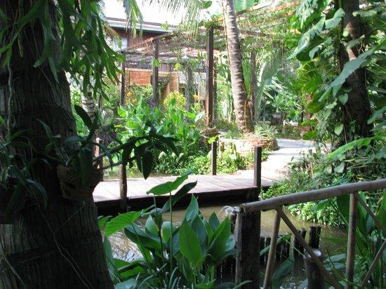 Maison Dalabua Hotel:                                     Garden