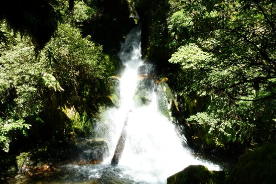 Foris Eco-Tours:                   Magic of the Water Fall