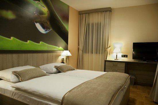 Hotel Calypso: Room