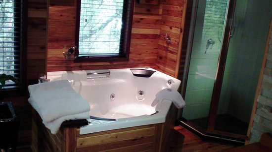 The Mouses House Rainforest Retreat :                                     Indoor Spa with view of Rainforest