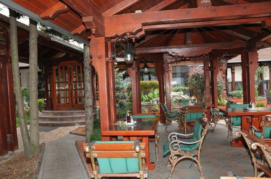 Hotel Calypso: Terrace