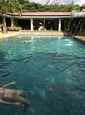 Hotel Tamarindo Diria:                   pool on beach side