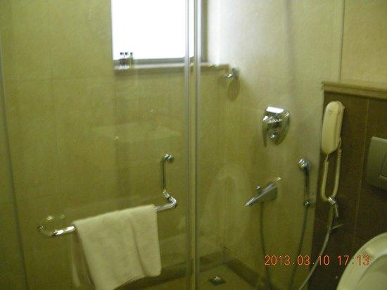 Zip By Spree Bluestone:                   Washroom