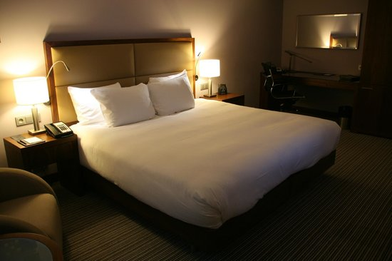 Hilton Gdansk :                   Hilton Guestroom with Pation View