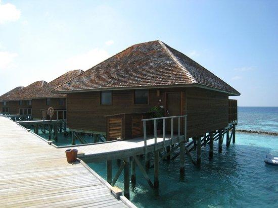Vakarufalhi Island Resort : Vakurufalhi  février/mars 2013