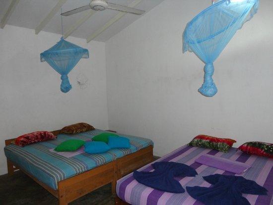 Palm Villa:                   Garden Suite room