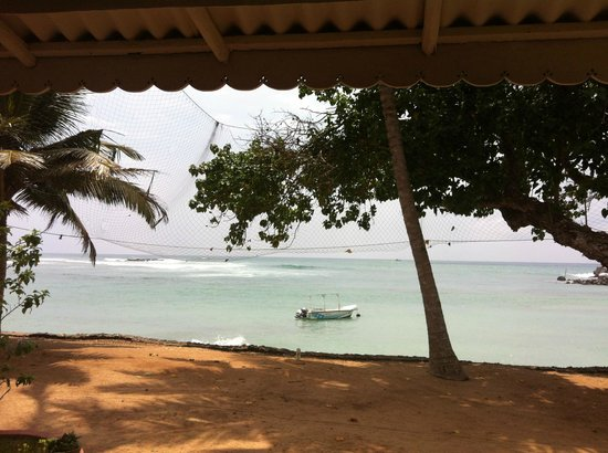 Palm Villa:                   View from the restaurant