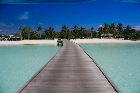 The Residence Maldives:                   Island View