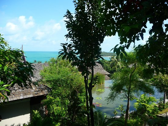Bhundhari Spa Resort & Villas Samui:                   il contesto del resort