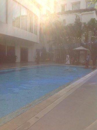 Park Plaza Chennai Omr:                   pool