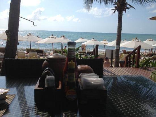 Samui Jasmine Resort :                   view from breakfast