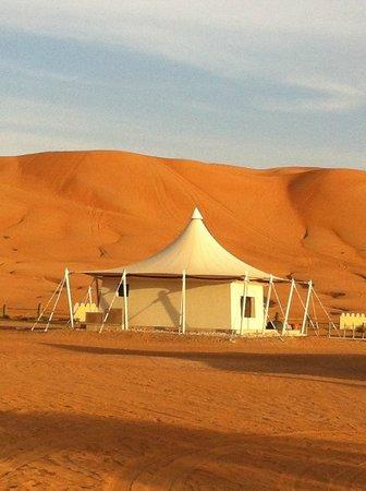 Desert Nights Camp:                                     first class accommodation