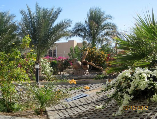 Coral Beach Resort :                                     Beautifully maintained grounds