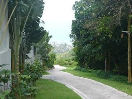 Infinity Residences & Resort Koh Samui:                   Looking Down Slope from Level L