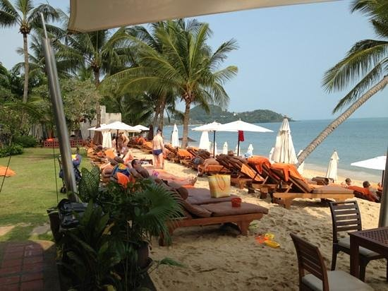 Bandara Resort & Spa:                   Strand