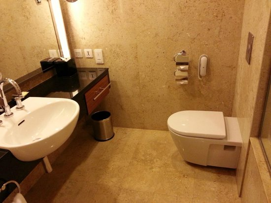 Royal Orchid Sheraton Hotel & Towers:                   Spacious toilet