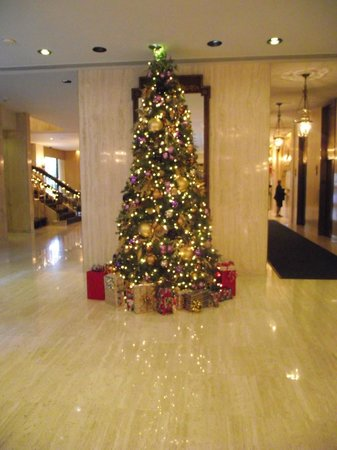 Park Lane Hotel:                   Christmas Tree in the Hotel Lobby